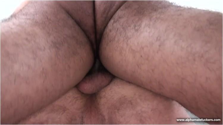 [Image: Gay_-_10_hughhunter_alessioromero._2_.001_l.jpg]