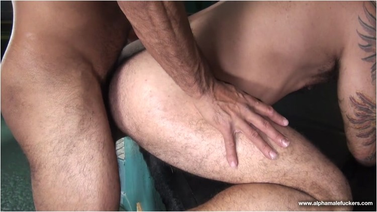 [Image: Gay_-_alessioromero_vinniestefano._4_.001_l.jpg]