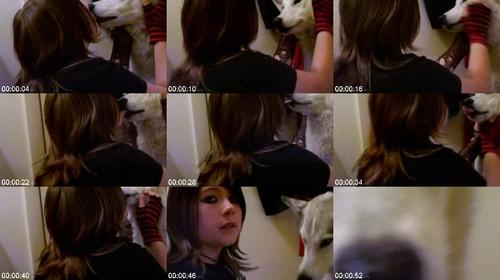 0604 DgSx Kissing Dog m - Kissing Dog - Dog Bestiality Video