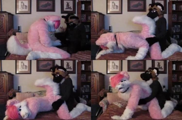 0501 ZooGay Pinkhusky And Hyena - Pinkhusky And Hyena - Male Bestiality