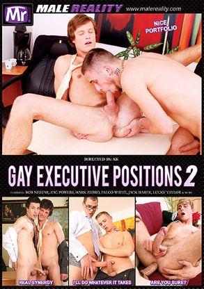 Gay Executive Positions 2 (2021)