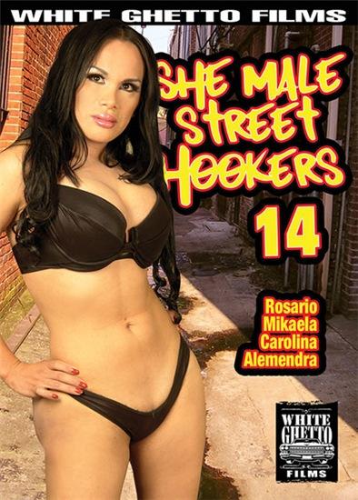 She Male Street Hookers 14 (2017)
