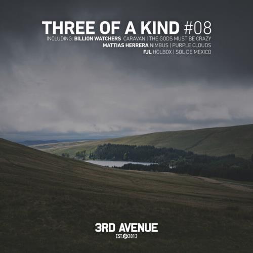 Three Of A Kind #08 (2021)