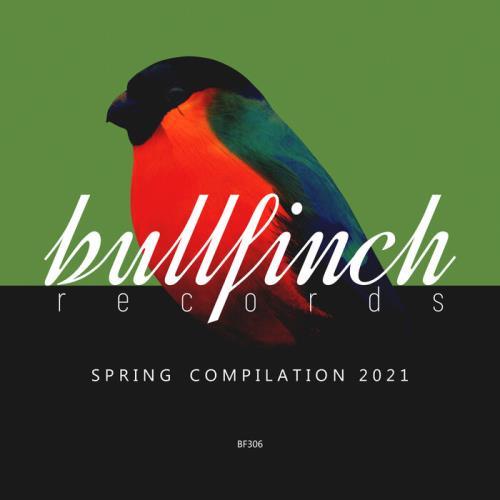 Bullfinch Spring 2021 Compilation (2021) FLAC