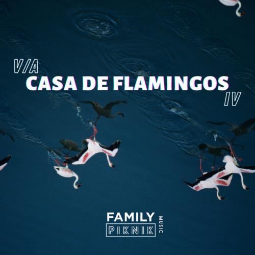 Casa De Flamingos IV (2021)