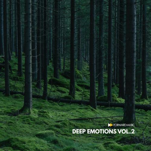 Deep Emotions, Vol. 2 (2021) FLAC