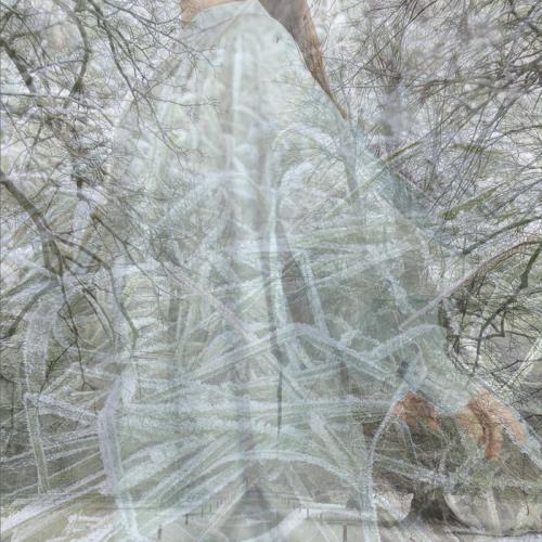 Jarr - An Echo In Her Skin (2021)