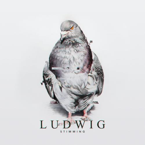 Stimming - Ludwig (2021)
