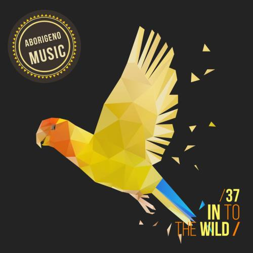 In To The Wild - Vol. 37 (2021) FLAC