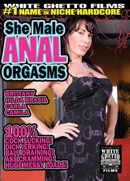 She Male Anal Orgasms (2016)