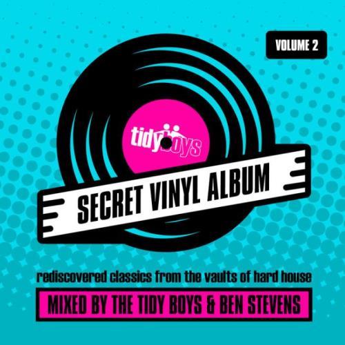 The Secret Vinyl Album Vol 2 (Mix Cut) (2021)