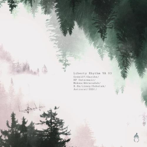 Liberty Rhythm VA 03 (2021)