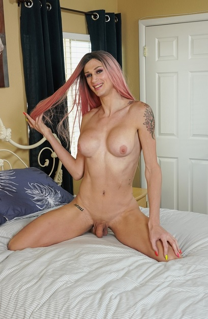Busty Trans Babe Receives Hung Dick