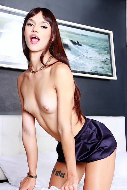 Transsexual Ass Ream