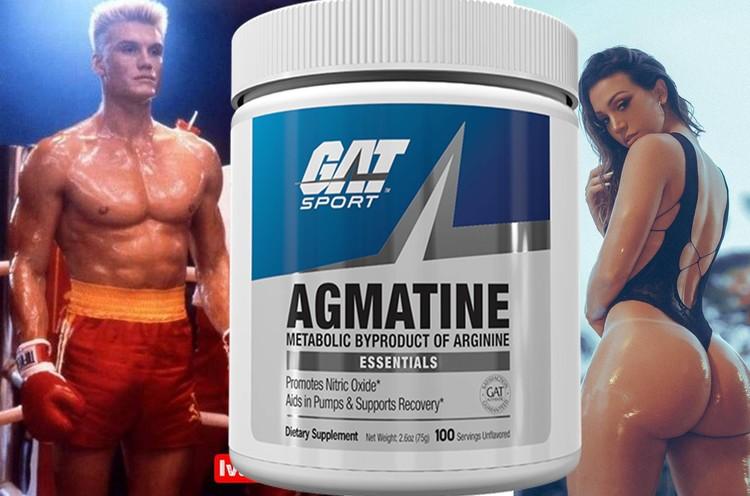 Agmatine Essentials by GAT Sport